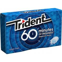 TRIDENT 60 MINUTOS MENTA 16U/.